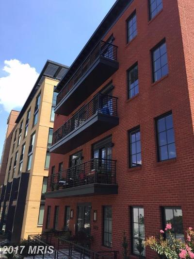 Rental For Rent: 1412 Chapin Street NW #303