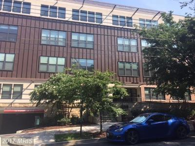 Washington Rental For Rent: 5201 Wisconsin Avenue NW #411