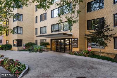 Washington DC Condo For Sale: $265,000