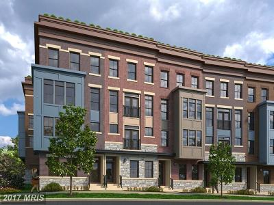 Washington Townhouse For Sale: 7227 Georgia Avenue NW