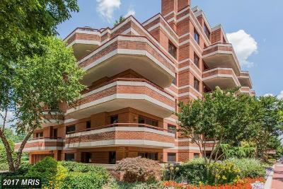 Rental For Rent: 2301 N Street NW #308