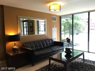Washington Rental For Rent: 1245 13th Street NW #613