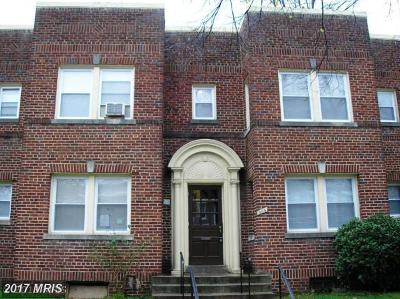 Rental For Rent: 904 5th Street NE #4