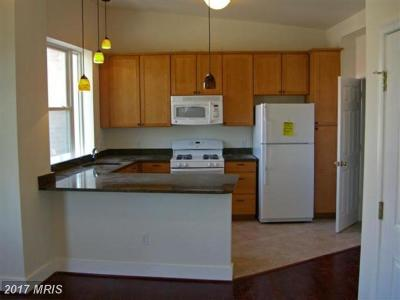 Rental For Rent: 3935 Georgia Avenue NW #B