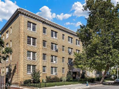 Washington Condo For Sale: 3314 Mount Pleasant Street NW #41