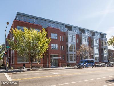 Capitol Hill Condo For Sale: 900 11th Street SE #G07