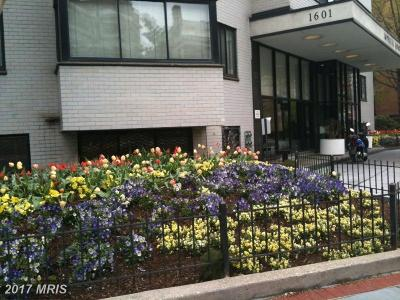 Dupont Condo For Sale: 1601 18th Street NW #811