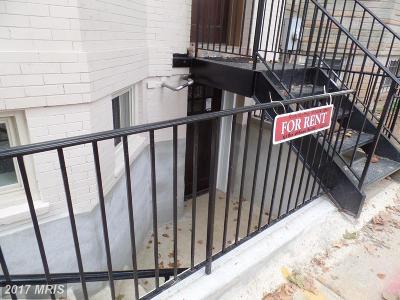 Washington Rental For Rent: 1008 Euclid Street NW
