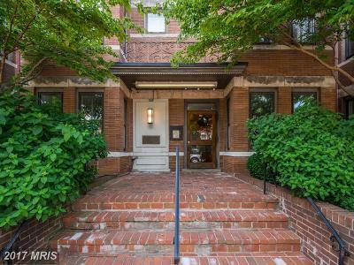 Washington Condo For Sale: 410 11th Street NE #17