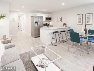 Petworth Condo For Sale: 911 Webster Street NW #1