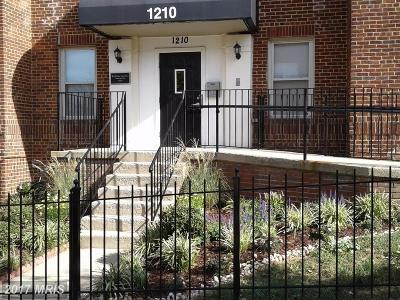 Washington Condo For Sale: 1210 Holbrook Terrace NE #201