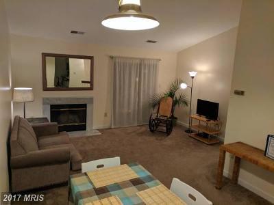 Rental For Rent: 58 Hawthorne Court NE #58