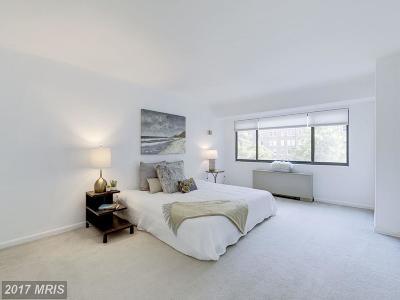 Washington Rental For Rent: 3701 Connecticut Avenue NW #316