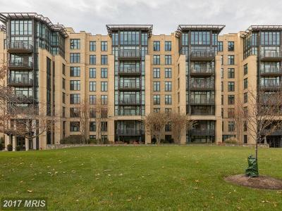 Washington Condo For Sale: 4301 Military Road NW #705