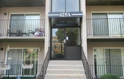 Rental For Rent: 625 Chesapeake Street SE #104