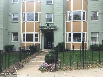Rental For Rent: 2829 Gainesville Street SE #104