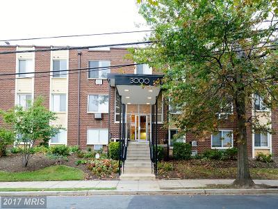 Brookland Condo For Sale: 3000 7th Street NE #101