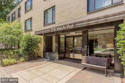 Washington DC Condo For Sale: $315,000