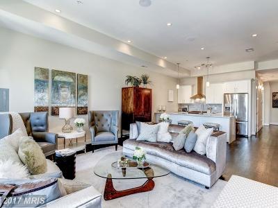 Washington Condo For Sale: 726 Girard Street NW #3