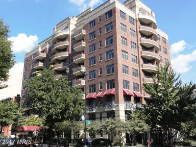Rental For Rent: 1401 17th Street NW #504
