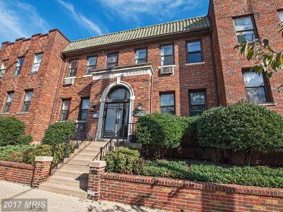 Brookland Condo For Sale: 3719 12th Street NE #107