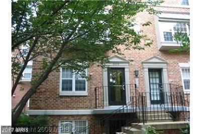Washington Rental For Rent: 3629 38th Street NW #38
