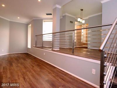 Kalorama Rental For Rent: 2123 California Street NW #B3