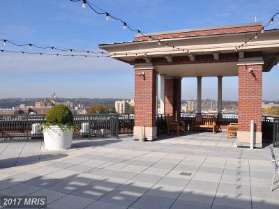 Washington Condo For Sale: 1390 Kenyon Street NW #502