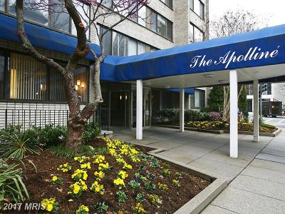 Washington Condo For Sale: 1330 New Hampshire Avenue NW #408