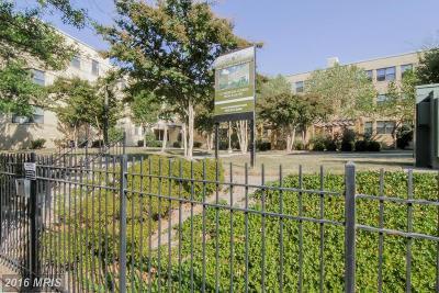 Washington Condo For Sale: 210 Oakwood Street SE #201