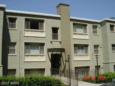 Rental For Rent: 2850 Hartford Street SE #203