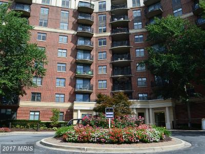 Washington Condo For Sale: 3401 38th Street NW #316
