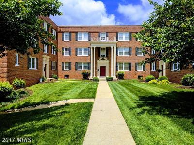 Rental For Rent: 3810 W Street SE #201