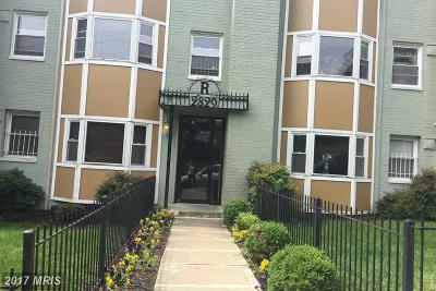 Rental For Rent: 2829 Gainesville Street SE #302