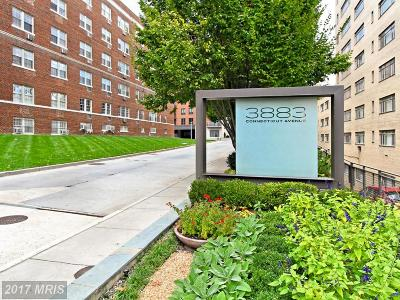 Rental For Rent: 3883 Connecticut Avenue NW #707