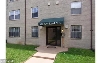 Rental For Rent: 210 43rd Road NE #104