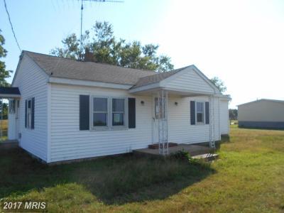 Dorchester Single Family Home For Sale: 1851 Brannocks Neck Road