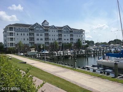 Dorchester Condo For Sale: 900 Marshy Cove #401E