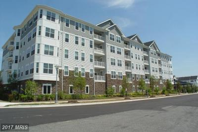Cambridge Rental For Rent: 700 Cattail Cove #402