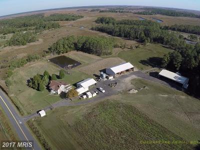 Dorchester County, Dorchester Farm For Sale: 2512 Toddville Road