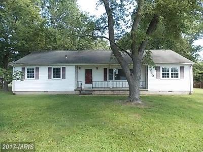 Dorchester Single Family Home For Sale: 5505 Mallard Lane