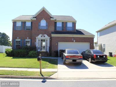 Dorchester Single Family Home For Sale: 306 Shepherd Avenue