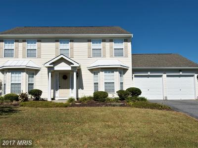 Dorchester Single Family Home For Sale: 161 Miles Circle