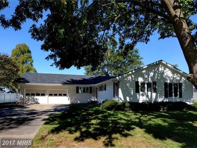 Single Family Home For Sale: 5146 Paw Paw Point Road