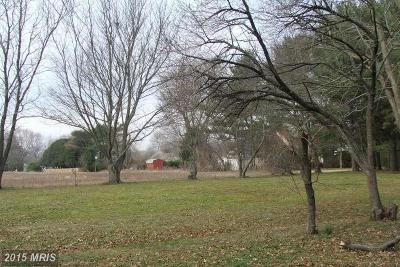 DORCHESTER COUNTY, Dorchester Residential Lots & Land For Sale: 424 Oakley Street