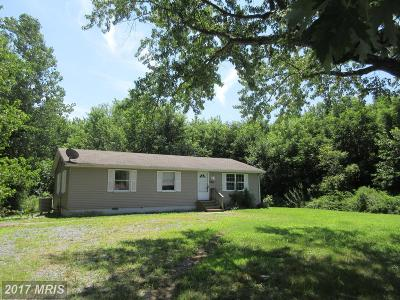 Dorchester Single Family Home For Sale: 2420 Rock Drive