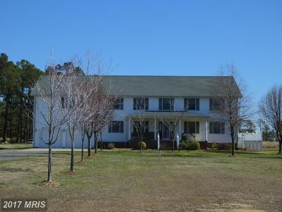 Farm For Sale: 2613 Hoopers Island Road