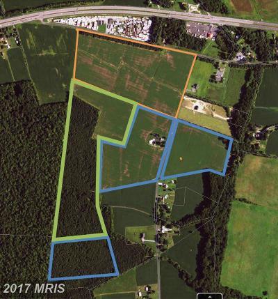 Dorchester County, Dorchester Farm For Sale: 5352 Chateau Road