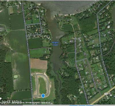 Residential Lots & Land For Sale: River View Road