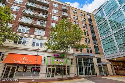 Falls Church Condo For Sale: 444 Broad Street W #523